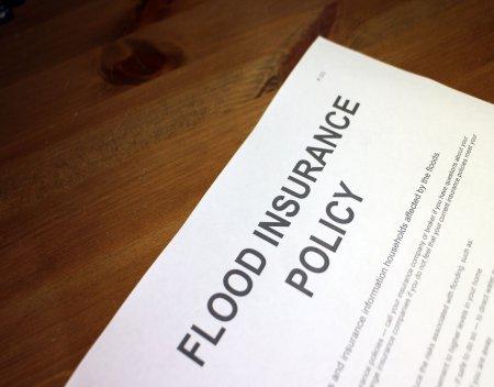 annual flood insurance premium