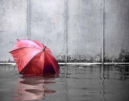 Federal Flood Insurance