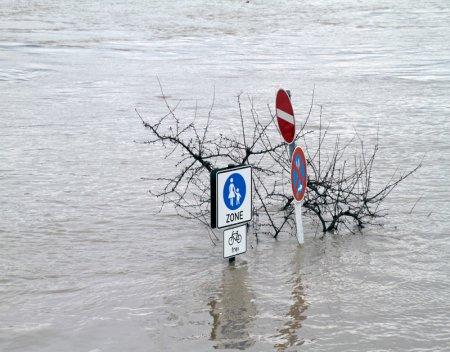 fema flood zone