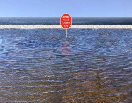 flood zone by address