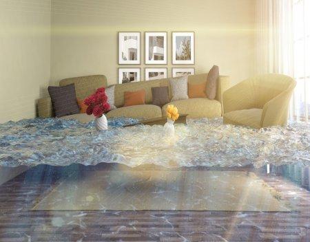 national flood insurance company